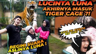 LUCINTA LUNA MASUK TIGER CAGE SAMPE KELUAR SUARA ASLINYA...