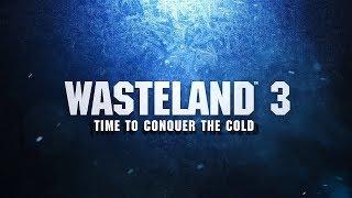 Wasteland 3 - What