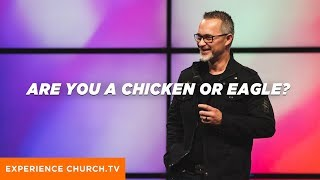 Are You A Chicken Or An Eagle?