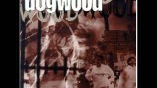 Dogwood-The Pain Is Gone