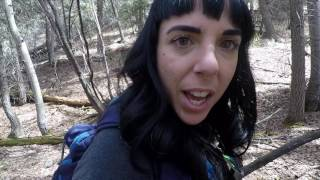 WE GOT LOST IN THE WOODS AND FOUND FAIRY HOMES!!! // Hiking In Colorado