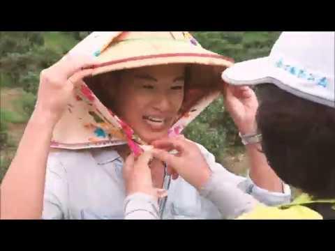 【恆春半島慢慢遊】社區生態旅遊系列#02 | 港口採茶品茶遊 |