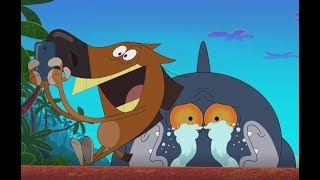 Zig & Sharko 📲  Selife and calm 📲  Don't be a follower 💪 Cartoons for Children