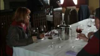 Video del alojamiento Hotel Enoturismo Mainetes