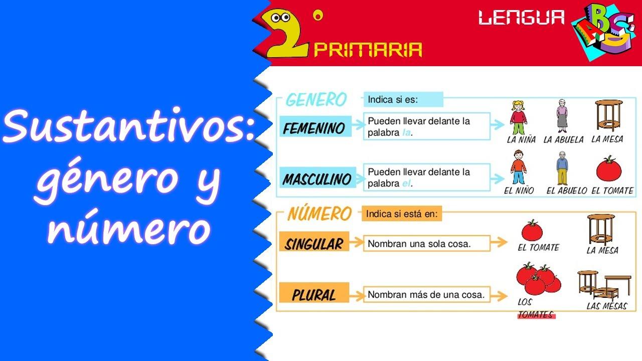 Lengua Castellana. 2º Primaria. Tema 4. Género y número del nombre