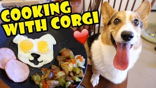 COOKING with CORGI DOG  -- Tasty Fall Recipes || Life After College: Ep. 617