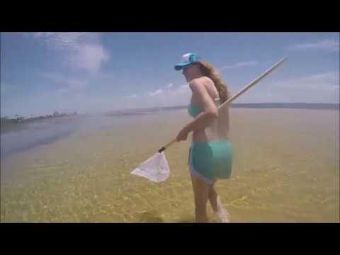 Southern Nation Outdoors crab fishing