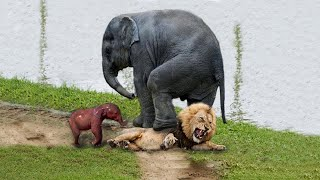 МАТЕРИ В ДЕЛЕ! Как мамы животного мира защищают детенышей