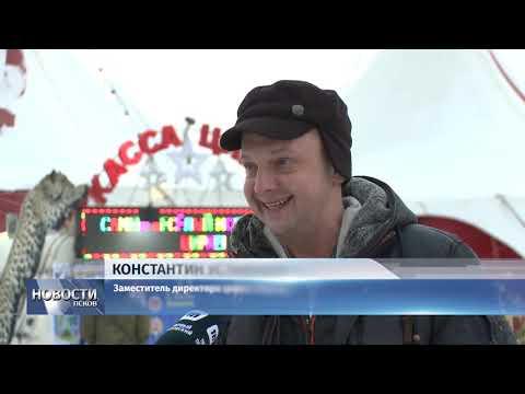 Новости Псков 25.12.2018 / Артисты цирка просят псковичей не верить надписям об отмене шоу