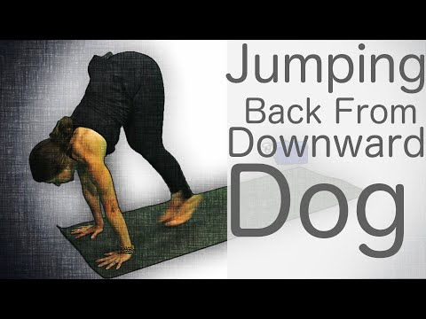 , title : 'Yoga Tutorials: How to Chatturanga, Step or Jump Back - With Fightmaster Yoga'