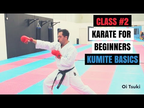 Martial Arts for Beginners – Lesson 2 / Karate Cobra Kai - Fighting Techniques