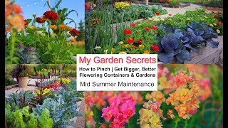 My Garden Secrets, How To Pinch, How To Get Bigger, Better Flower Containers & Gardens
