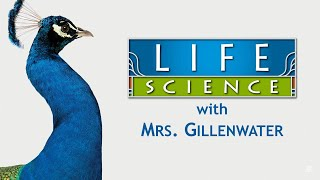 Grade 7 Life Science