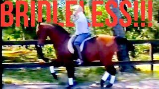 BRIDLELESS PIAFFE PASSAGE!!!