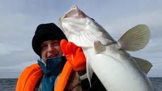 Рыбалка в териберке 2019 форум