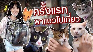พาแมวเที่ยวยกบ้าน! ทุ่มเงินกี่หมื่นประมูลน้องดี?