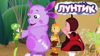 Лунтик | ТОП-15 серий 2019 года 🎊 Сборник мультфильмов для детей