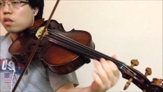Fiesta - Fairy Tail OP 6 (+Plus) - Viola Cover