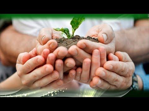 Семейное Счастье в доме могут создать комнатные растения!