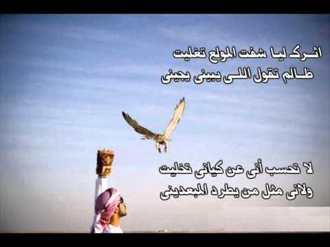 ahmadalatibi's Video 118923326935 c-pQM1zasPA