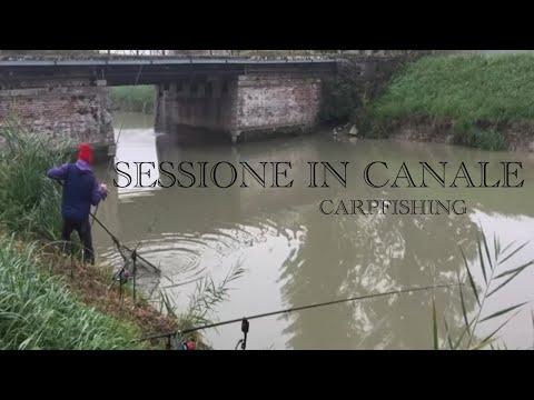 La pesca in un kushva su uno stagno
