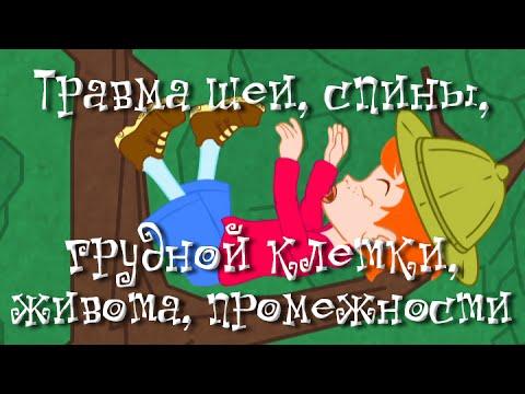 Травма шеи, спины, грудной клетки, живота, промежности - Неотложная помощь - Доктор Комаровский