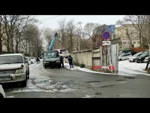 Житель Владивостока заснял любопытное и в тоже время поучительное видео