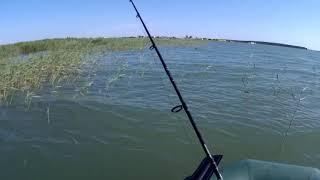 Рыбалка в чанах новосибирской области