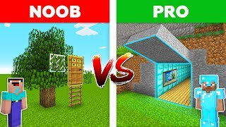 Minecraft NOOB vs PRO: SECRET DOOR in Minecraft!
