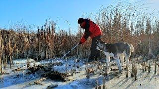 Первый лед 2019 рыбалка в пермском крае