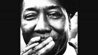 Muddy Waters Mississippi Delta Blues Music