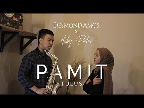 Pamit - Tulus (Feby Putri ft. Desmond Amos)