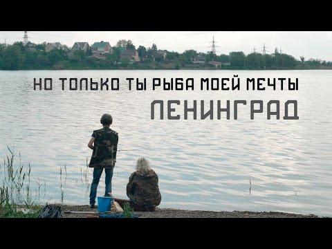 Ленинград - Но только ты рыба моей мечты (Не официальный клип)