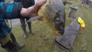 Платная рыбалка в сотниково ступинского района