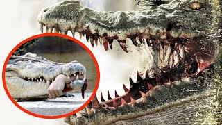 10 ყველაზე საშიში და მომაკვდინებელი ცხოველი