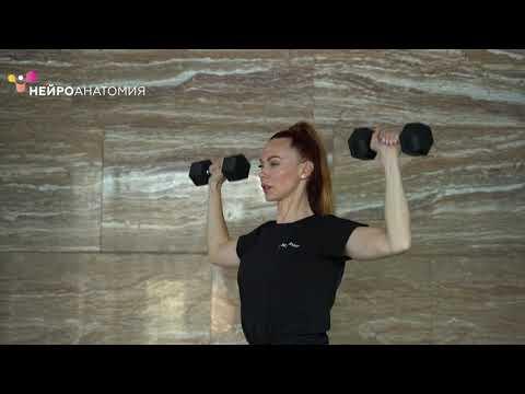 Комплекс упражнений для укрепления мышц верхнего плечевого пояса