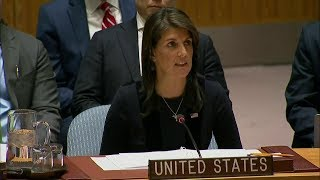 Emergency UN Security Council Briefing on Chemical Weapons Use by Russia in the United Kingdom