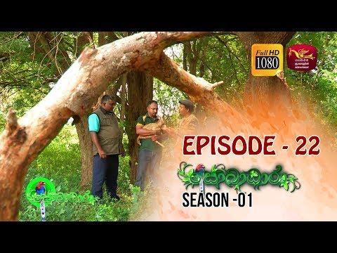Sobadhara  | Season - 01 | Episode 22 | Sobadhara Rupavahini