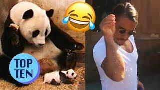 Top 10 Viral Videos of 2017