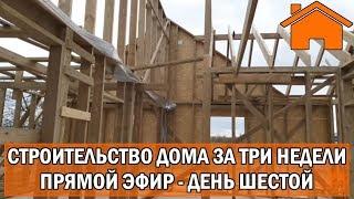 Строительство дома за 3 недели, прямой эфир. День шестой.