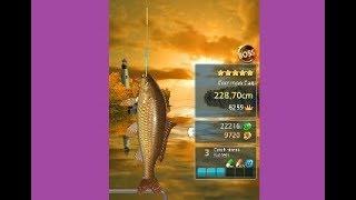 FISHING HOOK Angel Island CHALLENGE, BOSS and WILD FISH