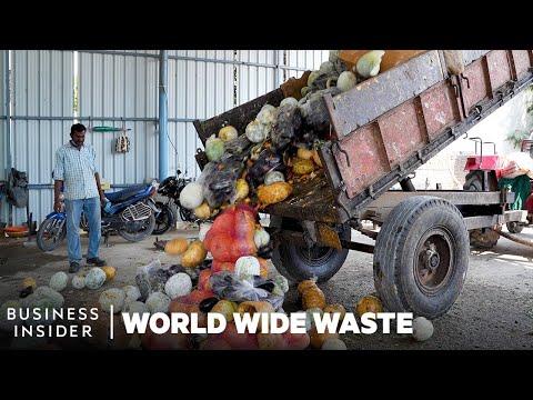 Světový odpad: Elektřina ze zeleniny? - Business Insider
