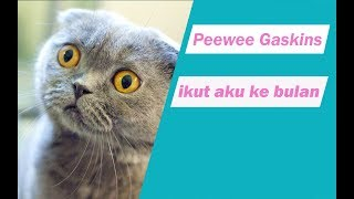 Peewee Gaskins   Ikut Aku Ke Bulan (video Lirik)