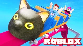 SIR MEOWS A LOT ROLLER COASTER IN ROBLOX