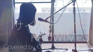 【女性が歌う】サイハテアイニ/RADWIMPS(Full covered by コバソロ & 春茶)