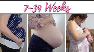 WATCH MY BELLY GROW (BABY #6) Pregnant Belly Progression