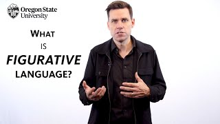 What Is Figurative Language?: A Literary Guide For English Students And Teachers