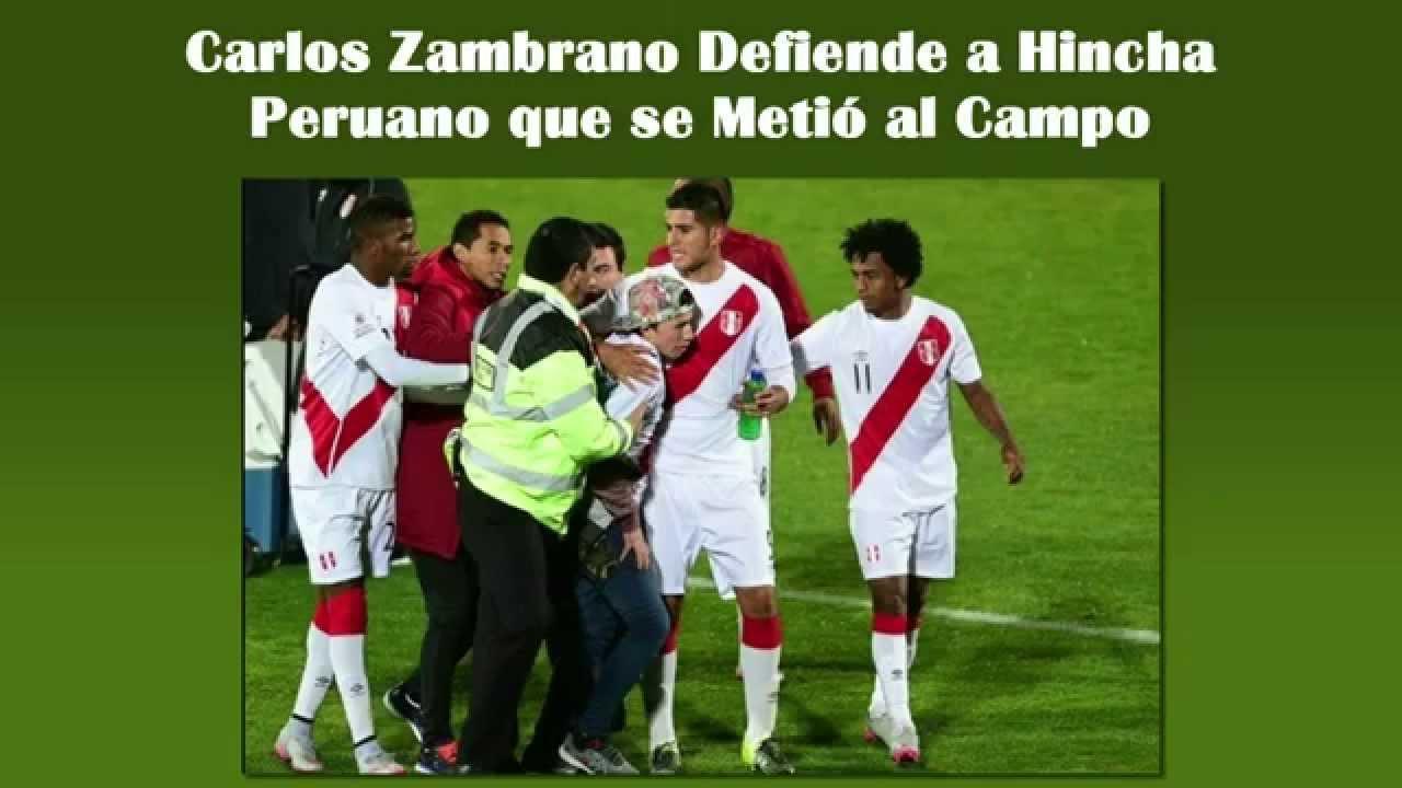Carlos Zambrano Defiende a Hincha Peruano que se Metió al Campo / Perú Venezuela 1-0 Copa América