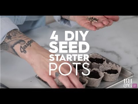 4 DIY Seed Starter Pots  | Basics | Better Homes & Gardens
