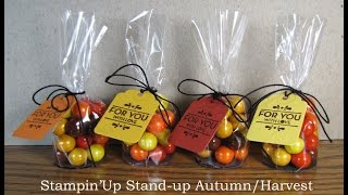 "Stampin'Up Stand-Up Autum/Harvest Treat Holders with 2"" Cellophane Bags"